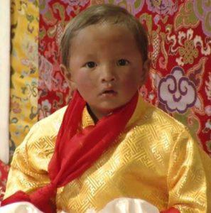 Reincarnazione di Tenga Rinpoche